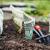Savez-vous planter des choux ?